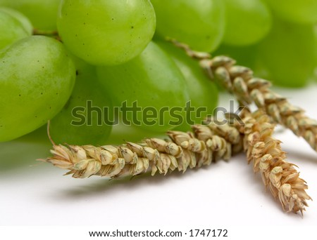 Grapes and wheat - stock photo