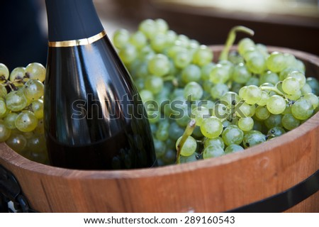 grapes in the barrel - stock photo