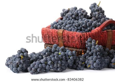 Grapes on white background - stock photo