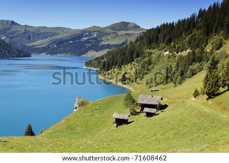 grass and lake - stock photo