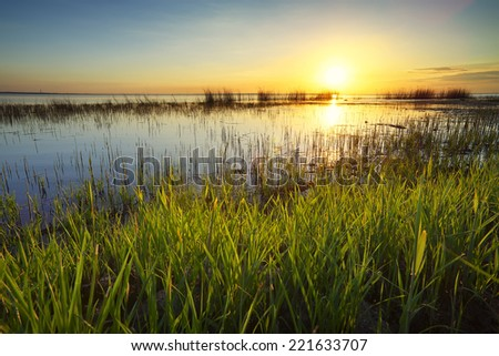 Grass and lake during sunset. Beautiful natural landscape - stock photo