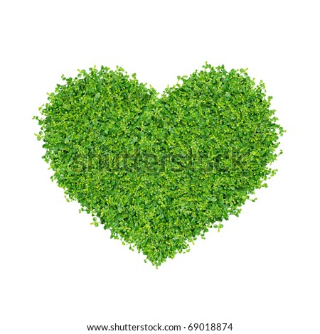 Grass and plants, small green heart. During the Valentine season. on white background. - stock photo