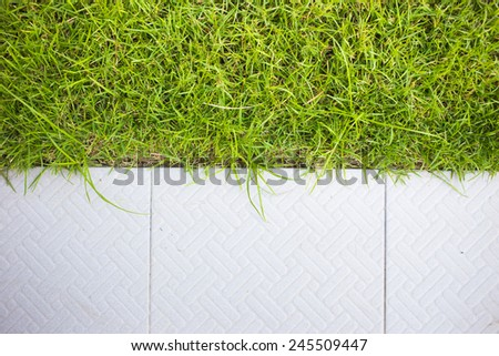 Grass and tile background - stock photo