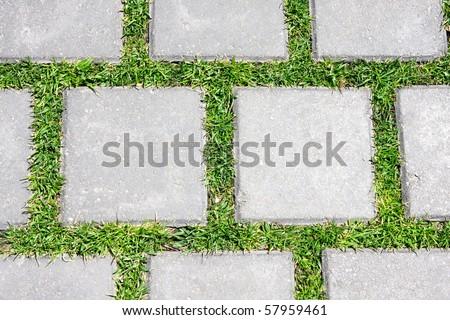 Grass between stones - stock photo