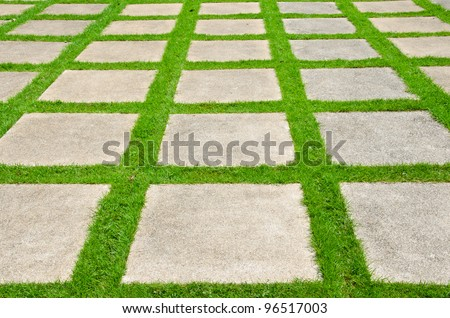 Grass between stones, block paving,. - stock photo