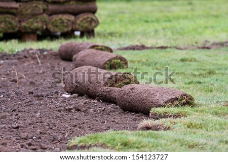 grass carpet - preparation and installation - stock photo
