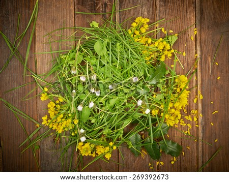 Grass, chamomile flowers and leaves on wooden table background - stock photo