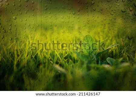 grass field ,view through the  glass on rainy day - stock photo