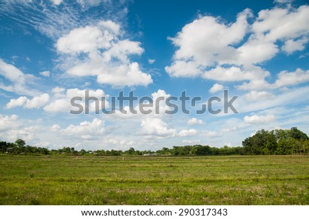 Grass field with blue sky and cloud. - stock photo