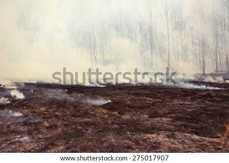 Grass Fire with Smoke, horizontal - stock photo
