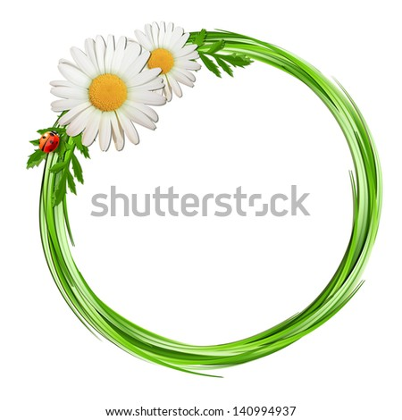 Grass frame with daisy flowers and ladybug . - stock photo