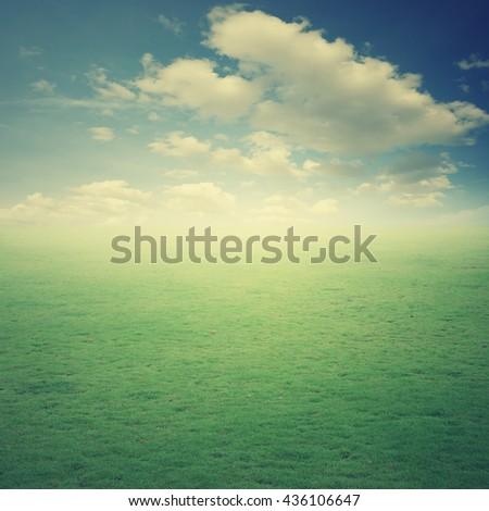 Grass Grass fields and sun sky.Vintage Tone - stock photo