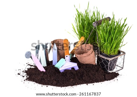 Grass in pots, ground  and  kids garden tools isolated on white  background.  - stock photo