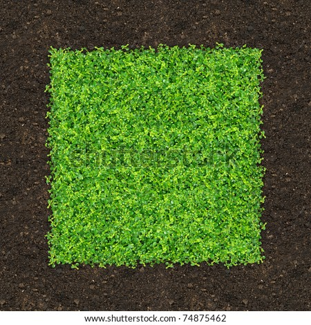 Grass is green rectangle on the ground. - stock photo