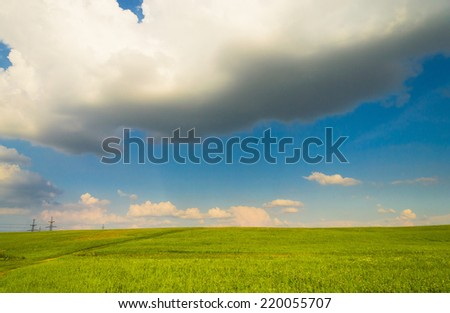 Grass Land Scenic View  - stock photo