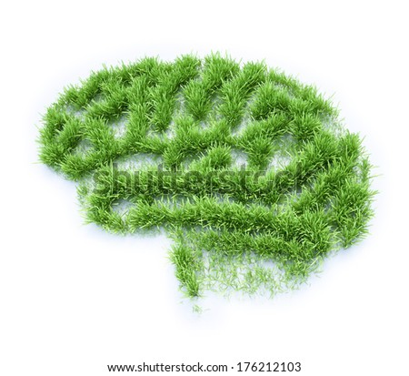 Grass patch shaped like a human brain - stock photo