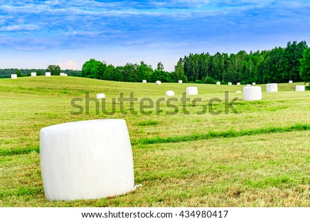 Grass silage  - stock photo