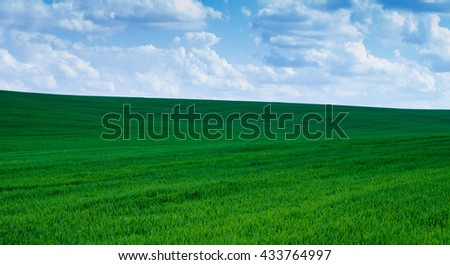 grass sky - stock photo