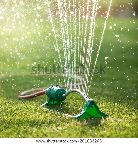 Grass sprinkler spaying water. backlight, shallow depth of field, blurred bokeh sun effect - stock photo