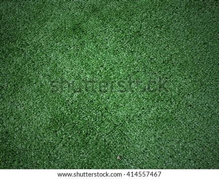 grass texture grass floor Golf Course Background pattern - stock photo