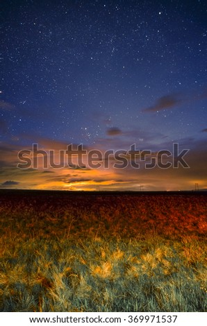 Grass under the night sky - stock photo