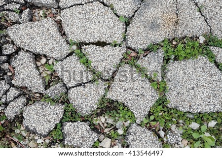 Grass with crack floor - stock photo