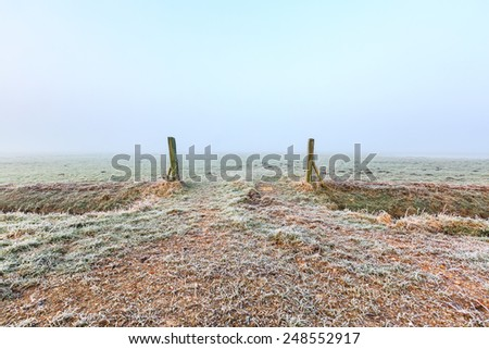 Grassland entrance on a cold winter day misty morning in Holland - stock photo