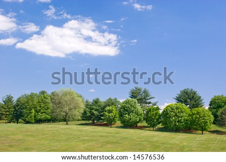Grassy Hillside Landscape with Green Trees and Partly Cloudy Blue Sky - stock photo
