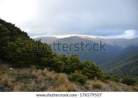 Grassy Mountains, New Zealand - stock photo