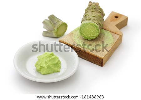 grated fresh wasabii by shark skin grater, japanese condiment for sushi and sashimi - stock photo