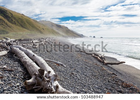 Gravel beach and driftwood in Gore Bay, East Coast of South Island, New Zealand - stock photo