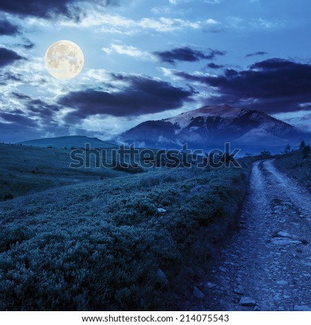 gravel road going off into the distance and passes through the green field in mountains at night in full moon light - stock photo