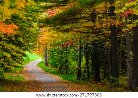 Gravel road leading through a canopy of trees, Stowe, Vermont, USA - stock photo