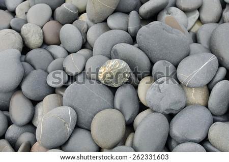 Gray stones texture - stock photo
