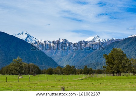 Grazing sheep on the meadows with Rustic fence  - stock photo