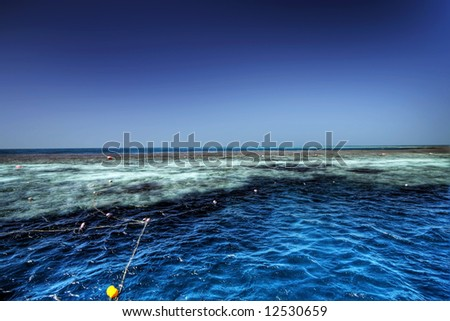Great Barrier Reef - stock photo