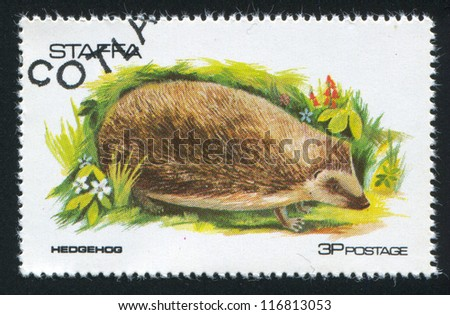 GREAT BRITAIN - CIRCA 1973: stamp printed by Great Britain, shows hedgehog, circa 1973 - stock photo
