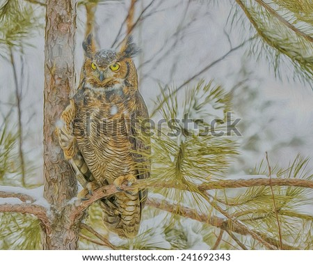 Great horned owl on winter roost - stock photo