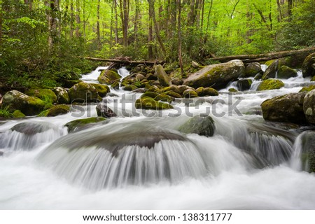 Great Smoky Mountains National Park Roaring Fork Motor Nature Trail Cascade - stock photo