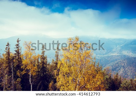 Great view of the valley which glowing by sunlight. Dramatic scene and picturesque picture. Location place Carpathian, Ukraine, Europe. Beauty world. Retro and vintage style. Instagram toning effect. - stock photo