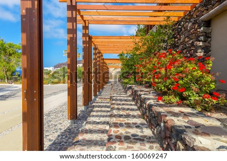 greece Santorini island in cyclades traditional view of colorful flowers  in thira under pergola  at summer during daylight - stock photo