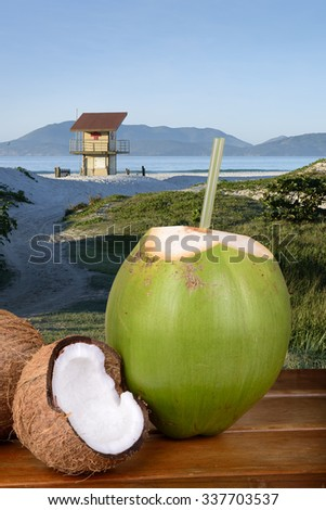 Green and Brown Coconuts at the beach - Rio de Janeiro, Brazil - stock photo