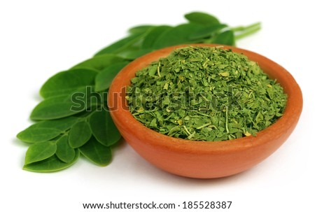 Green and dired moringa leaves with a small bowl - stock photo