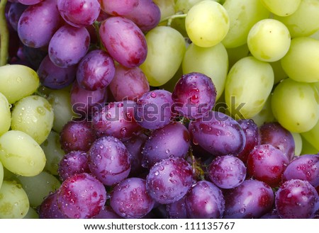green and rose grapes background - stock photo