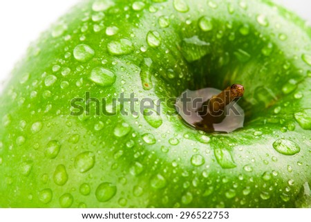 green apple macro in selective focus - stock photo