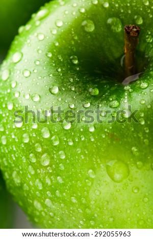 green apple macro in selective focus. studio shot - stock photo
