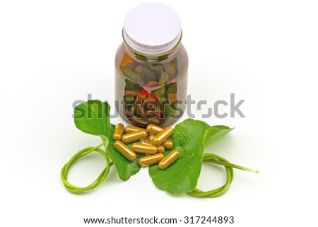 Green Asiatic Pennywort (Centella asiatica ) and yellow pill capsules and  bottle tablets on white  background - stock photo
