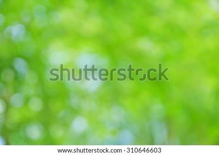 green background ,green bokeh  - stock photo