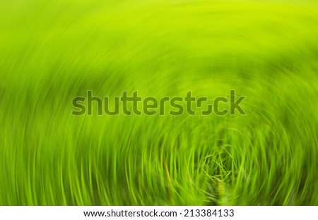 green background with selective focus - stock photo