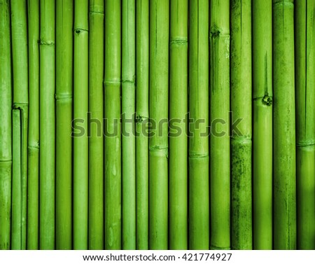 Green bamboo fence texture, bamboo background, texture background, bamboo forest - stock photo